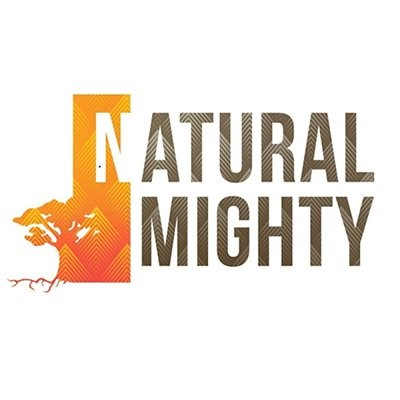 image COME ALONG - REFLECTION OF MY DREAMS - Naturalmighty Reggae