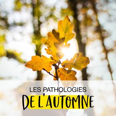 Les pathologies de l'automne cover