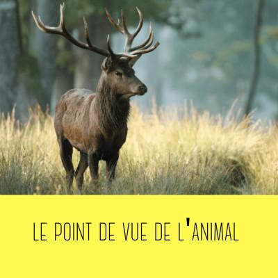 le point de vue de l'animal (Catherine Kerbrat-Orecchioni) cover