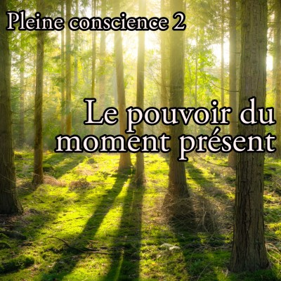 Pleine conscience 2 - Le pouvoir du moment présent cover