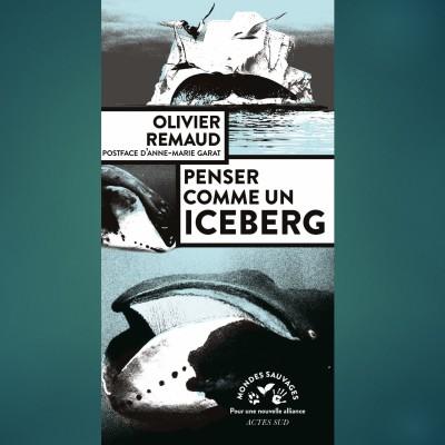 S02E80 Icebergs 1/4: Penser comme un iceberg, Olivier Remaud (auteur) cover