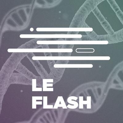 image Flash - L'ADN, votre nouveau support de stockage de données