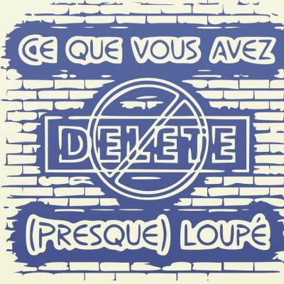 BONUS : CE QUE VOUS AVEZ (PRESQUE) LOUPÉ #2 cover