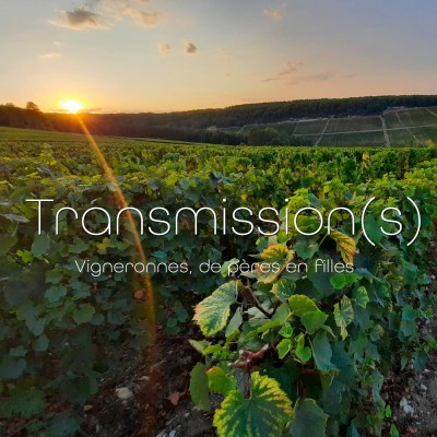Transmission(s) cover