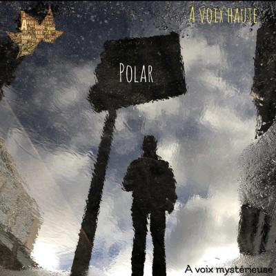 A Voix Mysterieuse - Etranges Disparitions  2- Jerome Fouquet - voix  Yannick Debain . cover