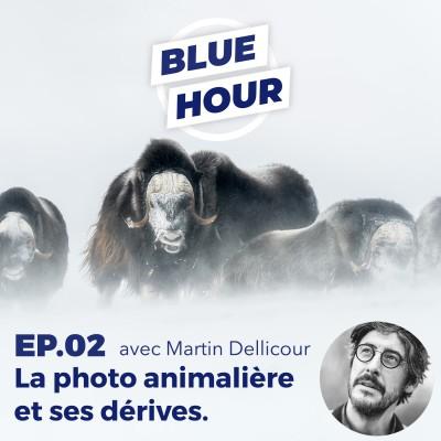 EP.02 - Martin Dellicour // La photo animalière (+ nature) et ses dérives cover
