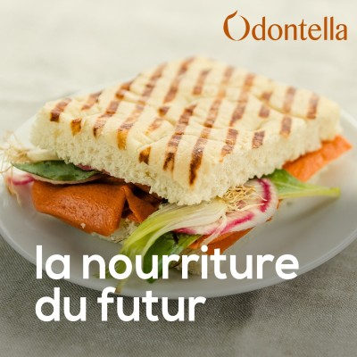 Image of the show Odontella - La nourriture de demain !
