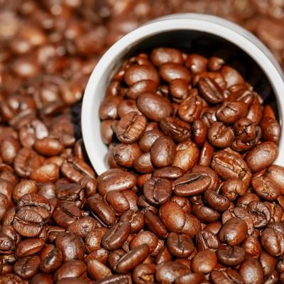 """image Aires sur A13 : """"On offre le café le matin, on s'est adapté !"""""""