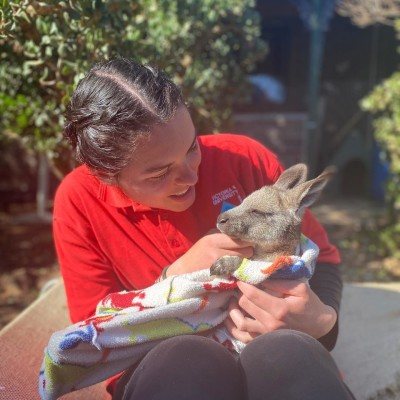 Charlotte, une maman Kangourou française en Australie cover