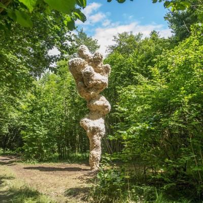 Vent des Forêts : de l'art en pleine nature ! cover