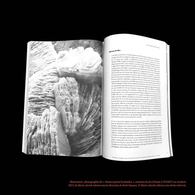 « Berceau de Mica » dans le chapitre « Le dinosaure qui est en moi », Danser parmi les fossiles, Marie-Sarah Adenis cover