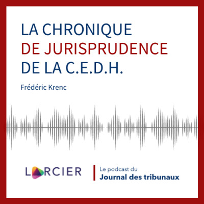 #17 - La chronique de jurisprudence de la C.E.D.H. cover