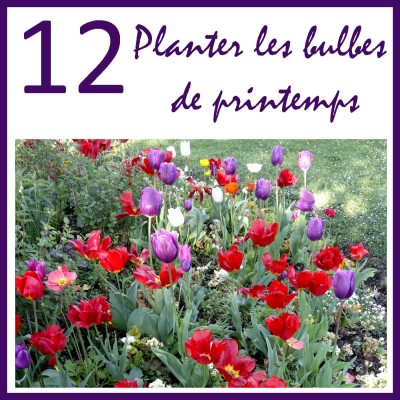 Planter des bulbes de printemps cover