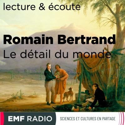 Romain Bertrand - Le détail du monde cover