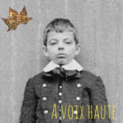 Antoine de Saint Exupery- Le petit Prince - épisode 1. Conteur : Yannick Debain cover