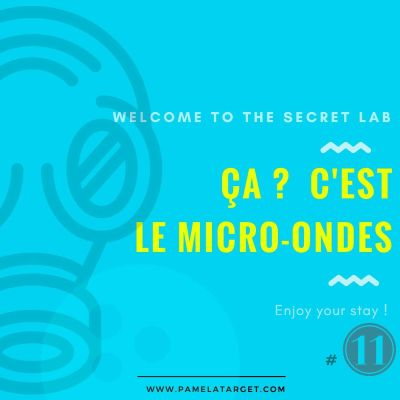 PTS01E11 The Secret Lab cover