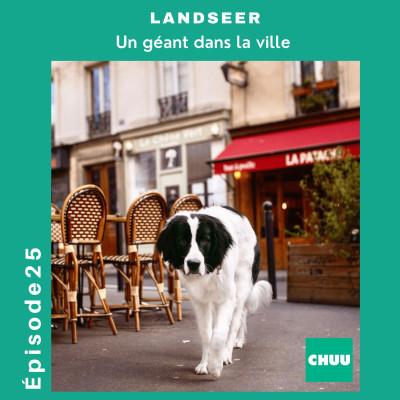# 25 - LANDSEER - Un géant dans la ville ! cover