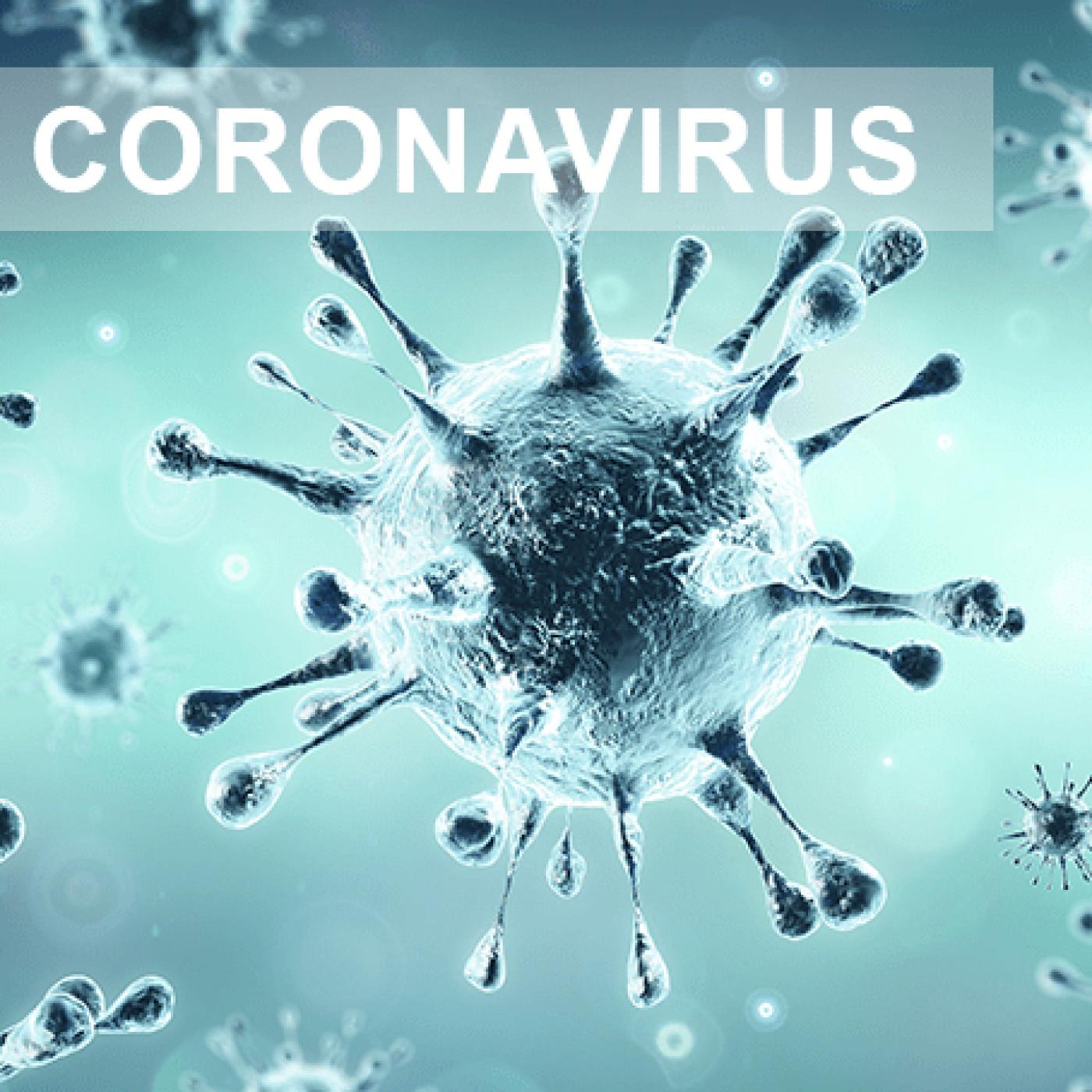 Émission spéciale CORONAVIRUS (en Confinement) du 25/03/20