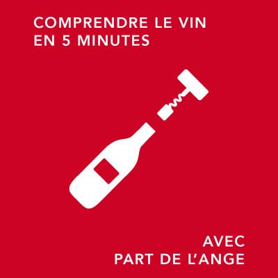 Le Beaujolais Nouveau : d'où vient ce phénomène ?/ comprendre le vin en 5 minutes cover