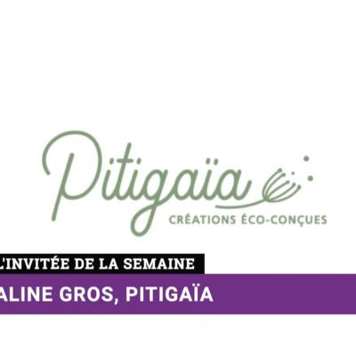 Business Club de France TV S2021 E55 A. Gros - Pitigaïa cover