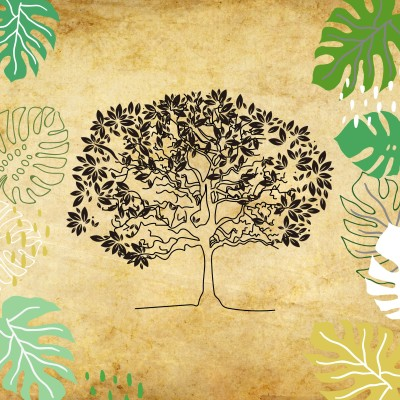 Le rôle des arbres dans nos écosystèmes cover
