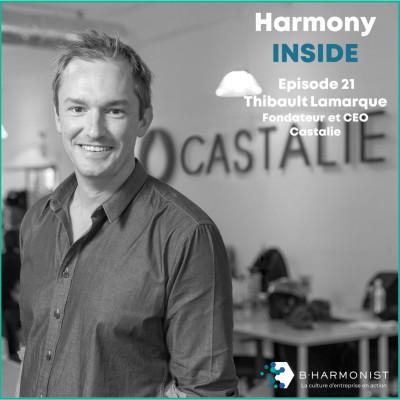 #21 Thibault Lamarque, Castalie : « Je pense que toutes les entreprises peuvent donner du sens » cover