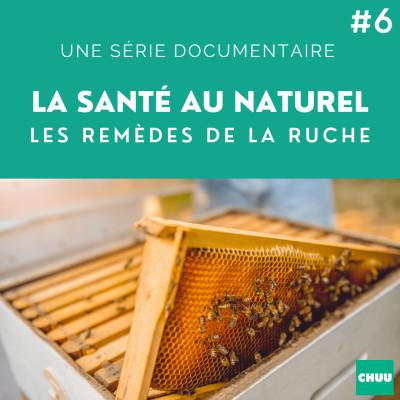 # 42 - LA SANTE AU NATUREL - Les remèdes de la ruche cover