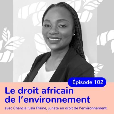 Chancia Ivala Plaine, juriste en droit de l'environnement, droit africain de l'environnement face aux enjeux actuels cover