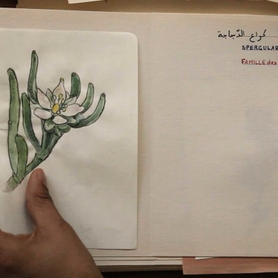 L'Art de l'écoute | 'Écouter le vivant' avec Mohamed Bourouissa suivi d'Anne Versailles cover