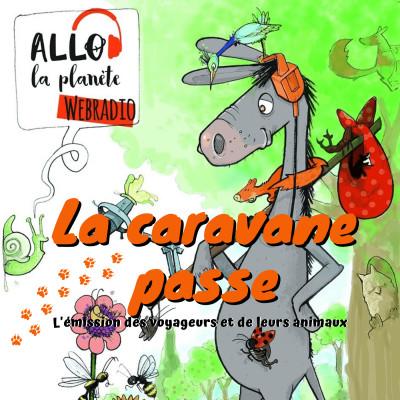 Image of the show La caravane passe