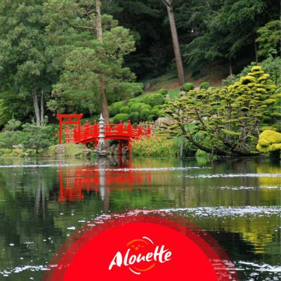 Le Parc Oriental de Maulévrier, plus grand jardin japonais d'Europe cover