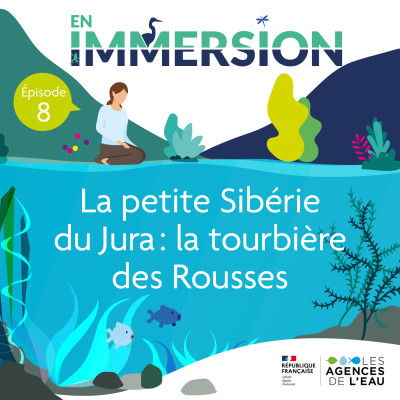 La petite Sibérie du Jura: la tourbière des Rousses cover
