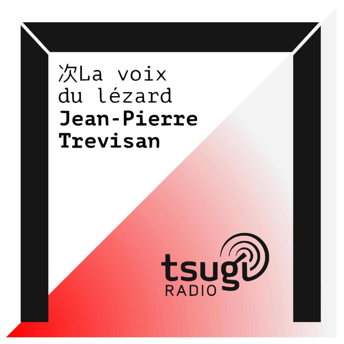 La Voix Du Lézard :  Indie pop et Twee pop