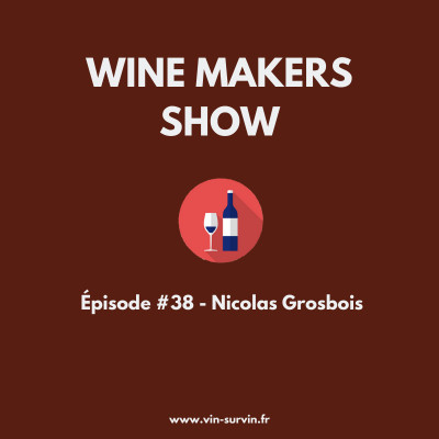 #38 - Nicolas Grosbois, Chinon cover