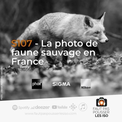 S107 - La photo de faune sauvage en France cover
