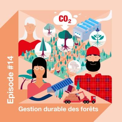 Investir dans la forêt pour préserver l'avenir cover