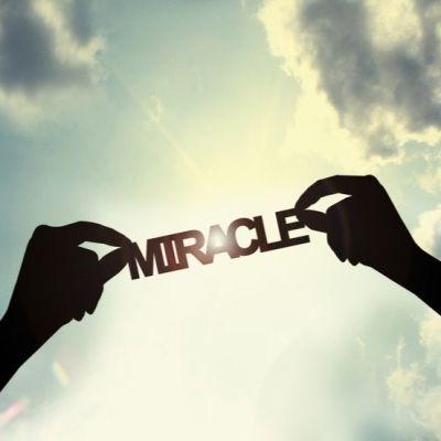 image Les miracles de Jésus - Thomas Bertrand