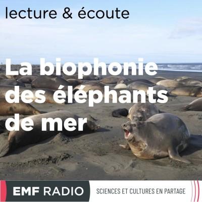 La biophonie des éléphants de mer cover