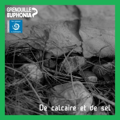 De calcaire et de sel | Port Miou, la calanque qu'on ne voit pas - ep2 cover