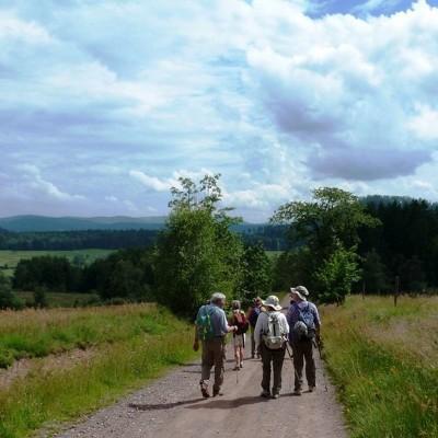Vallée de la Bruche : Les sentiers plaisirs reprenennent du service cover