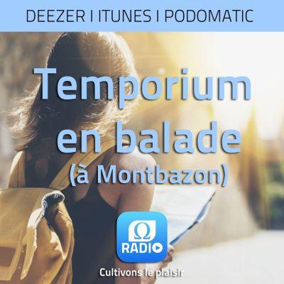 image Temporium en balade ... Montbazon #2
