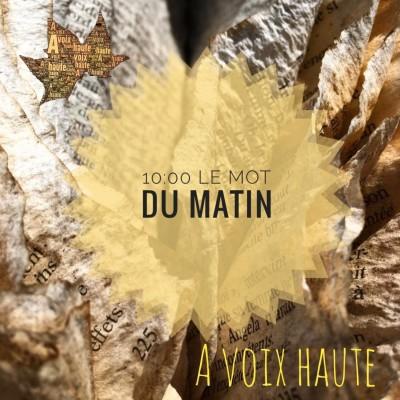 28 - LE MOT DU MATIN - Francoise Sagan - Yannick Debain. cover