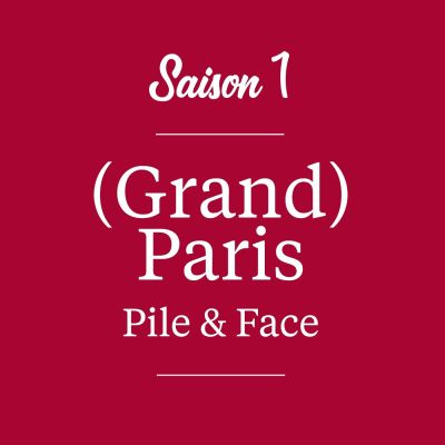 (Grand) Paris Pile & Face cover