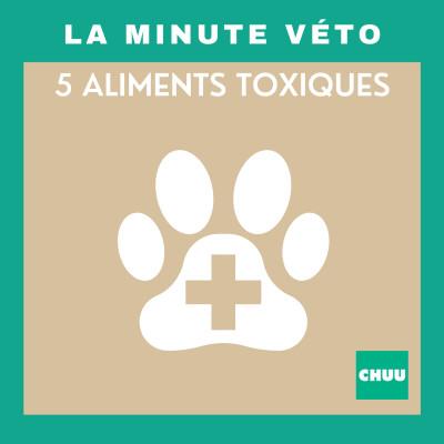 La minute véto : 5 aliments toxiques ! | #Santé4 cover