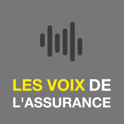 « Les voix de l'assurance » par Vovoxx cover