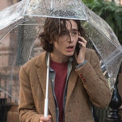 Un jour de pluie à New-York : Woody Allen revient à Manhattan cover