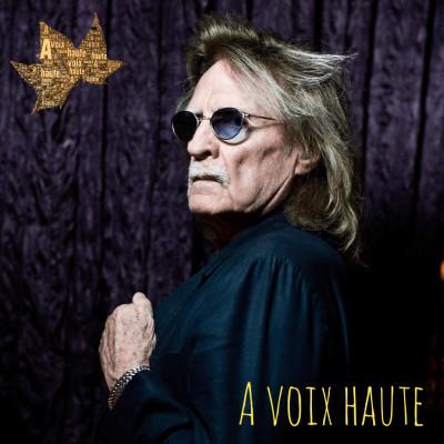 Christophe - Les mots Bleus - Yannick Debain. cover