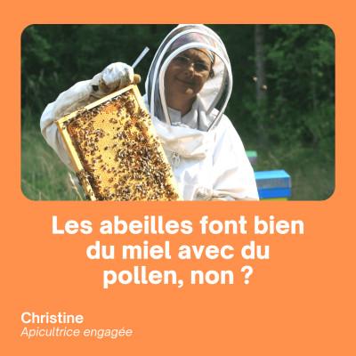 Les abeilles fabriquent bien du miel avec du pollen, non ? - Christine Gonella cover