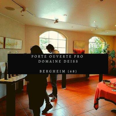 Episode 36: Porte ouverte pro au Domaine Deiss (68) cover