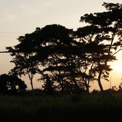 #2050*COP25 Points de vue: le Bénin cover